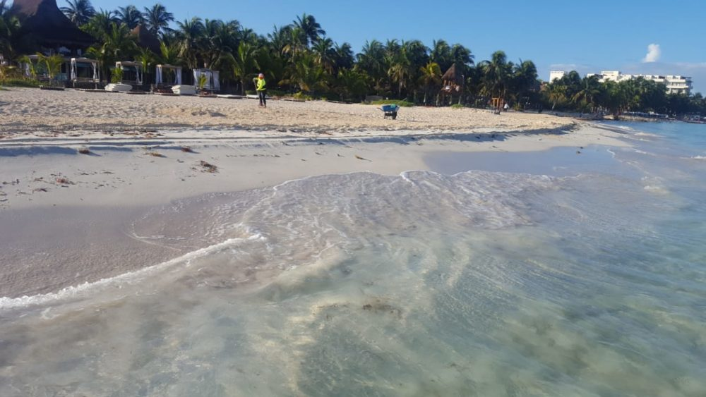 playas sin sargazo