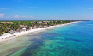 Playas de Quintana Roo libres de sargazo